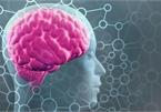 Công nghệ mới hứa hẹn khả năng xoá bỏ những ký ức tồi tệ đã qua