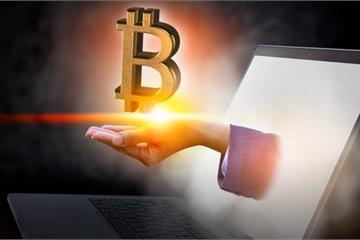 Giúp khách hàng tìm lại mật khẩu ví Bitcoin, hai cha con lập trình viên chạm tay vào kho vàng ảo 4,7 tỷ USD