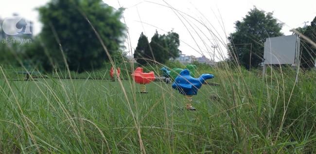 Hà Nội: Khu vui chơi chung cư bị bỏ hoang do người dân lo sợ rắn hổ mang tấn công - Ảnh 2.