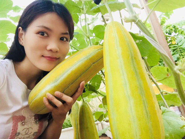 Trồng 50 gốc dưa trên vườn sân thượng, cô gái Sài Gòn bội thu quả - Ảnh 10.