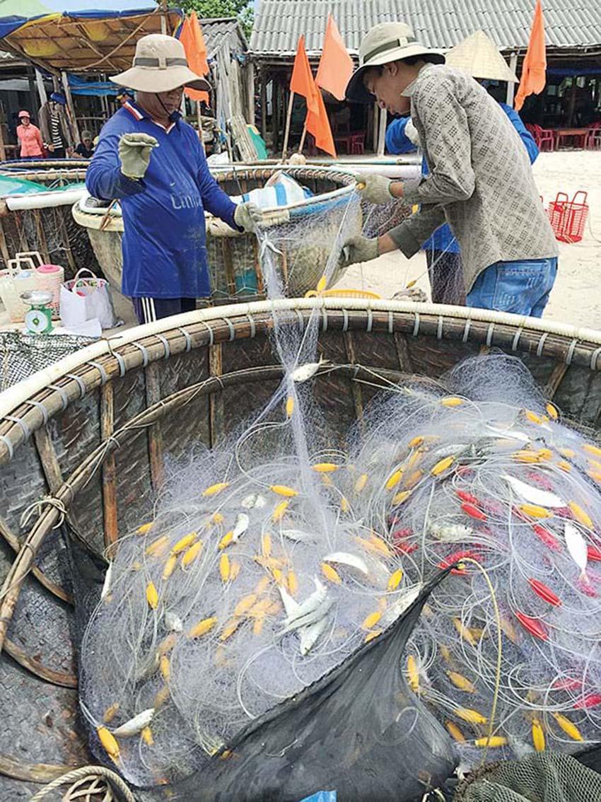 Món gỏi cá ăn mãi không chán ở Phú Quốc - Ảnh 4.