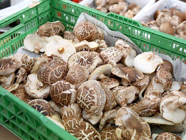 Nấm hương Nhật hơn 8 triệu đồng/kg, dân Hà Nội mua về xào rau, nấu canh ăn hằng ngày - Ảnh 5.
