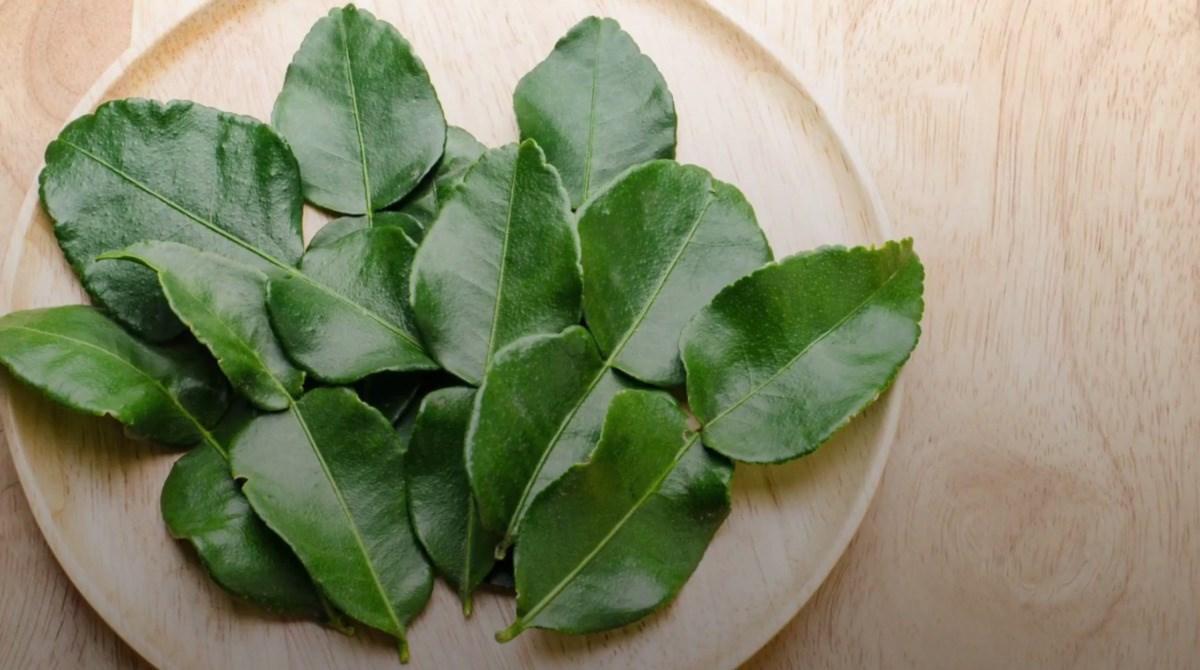 3 loại rau gia vị ở Việt Nam mọc nhan nhản, bán rẻ bèo đầy chợ mang sang nước ngoài đắt như sâm núi - Ảnh 12.