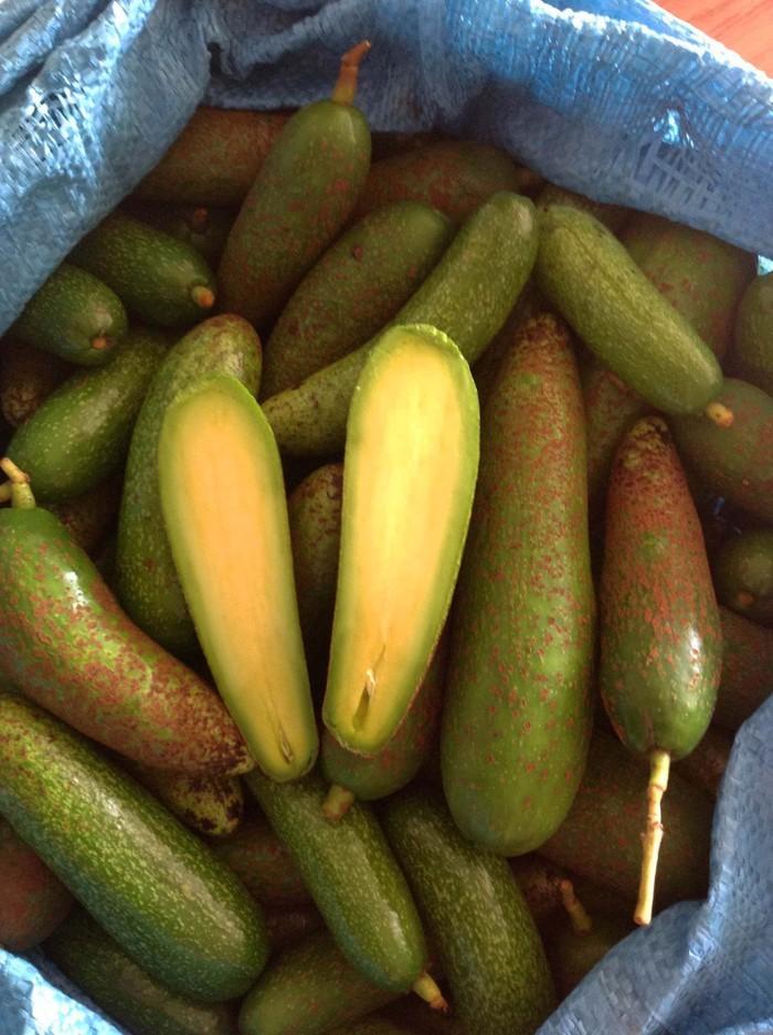 5 loại trái cây không hạt làm mưa làm gió trên thị trường - Ảnh 4.