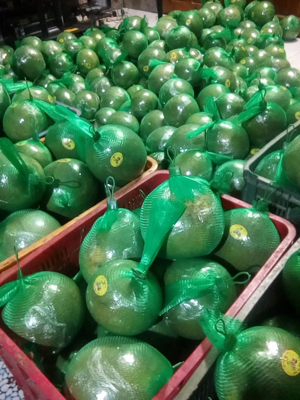 Bưởi da xanh giảm giá còn 30.000 đồng/kg vẫn ế sưng - Ảnh 5.