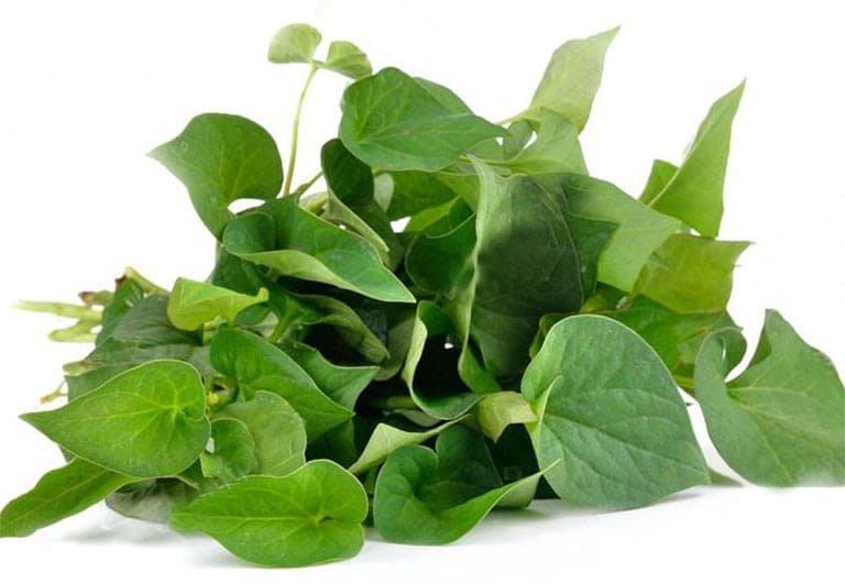 Loại rau tanh ngòm, mọc khắp vườn, trước dùng cho lợn ăn, mang sang Trung Quốc quý như vàng - Ảnh 2.