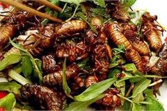 Món đặc sản thử thách lòng can đảm của người ăn ở vùng Long Khánh