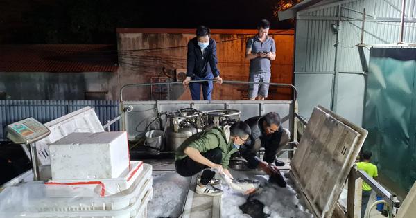 Bất chấp những chỉ đạo 'nóng', cá tầm Trung Quốc vẫn được cấp phép nhập khẩu về Việt Nam