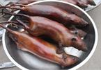 Hết hồn đặc sản thịt chuột của người Hà Nội, nhìn khiếp đảm nhưng giá không hề rẻ