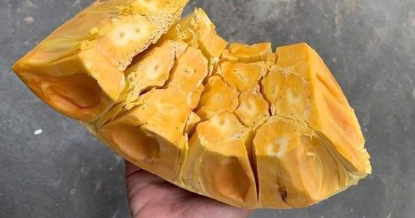 Mít Thái giảm giá, người trồng 'khóc' vì chỉ đủ tiền phân bón