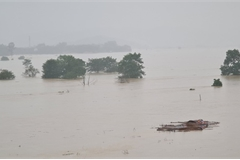 Rising Lam River submerges thousands of homes in Nghe An