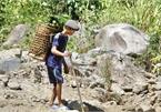 Vietnamese jungle man still misses the wild life