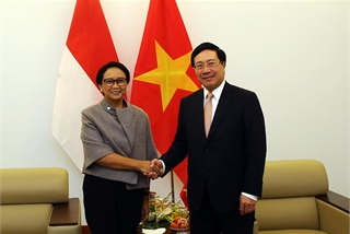 Vietnam, Indonesia commit to close coordination as UNSC non-permanent members