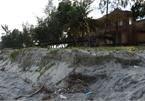 Quang Ngai beach faces serious erosion
