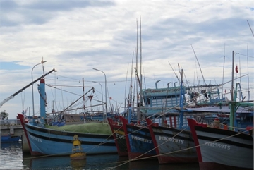 Thousands of fishing vessels face suspension