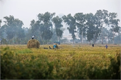 Straw burning worsens Hanoi air pollution