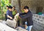 Wild animals illegally traded in Phong Nha-Ke Bang National Park