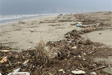 Rubbish blankets Ha Tinh beach following floods
