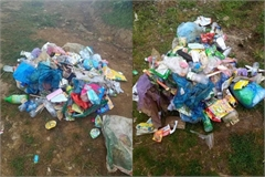Sapa tea hill to be closed due to litter crisis