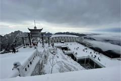 Tourists rush to Fansipan to see snow