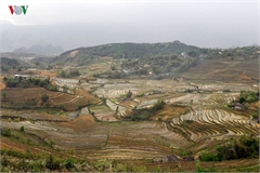 Stunning rice terraced fields in Lai Chau