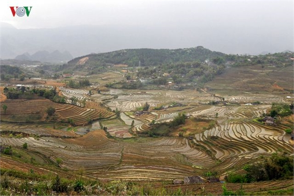 Stunning rice terraced fields in Lai Chau
