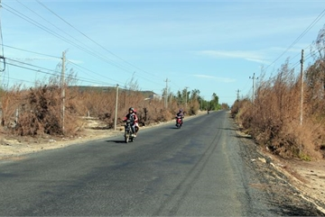 Phu Yen preventive forest ravaged by droughts