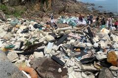 Hundreds collect litter in Da Nang