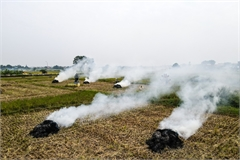 Straw burning worsens Hanoi air pollution