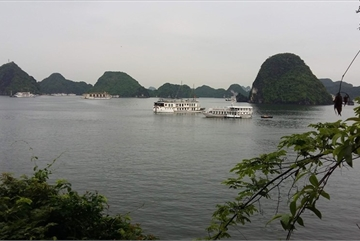 Proposals for tourism services for Ha Long Bay meets opposition