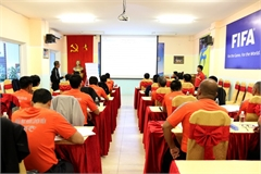 Vietnam Football Federation to have new technical director