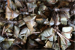 Sticky rice dumpling village busy during Doan Ngo Festival