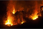 Forest fires ravage Nghe An and Ha Tinh