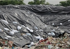 Dumping site tortures Sam Son residents