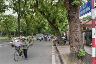 Hanoi's super-short streets explored