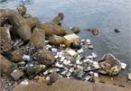 Phu Quoc Island threatened by rubbish