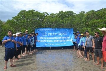 Nha Trang starts mangrove restoration project