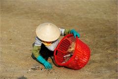 Sanitation workers battle rubbish in Ha Long Bay