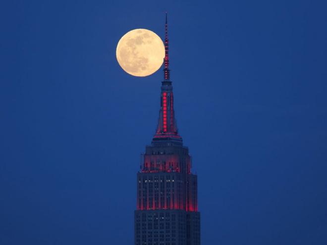 Siêu trăng hồng được đặt tên theo một loài hoa rêu.
