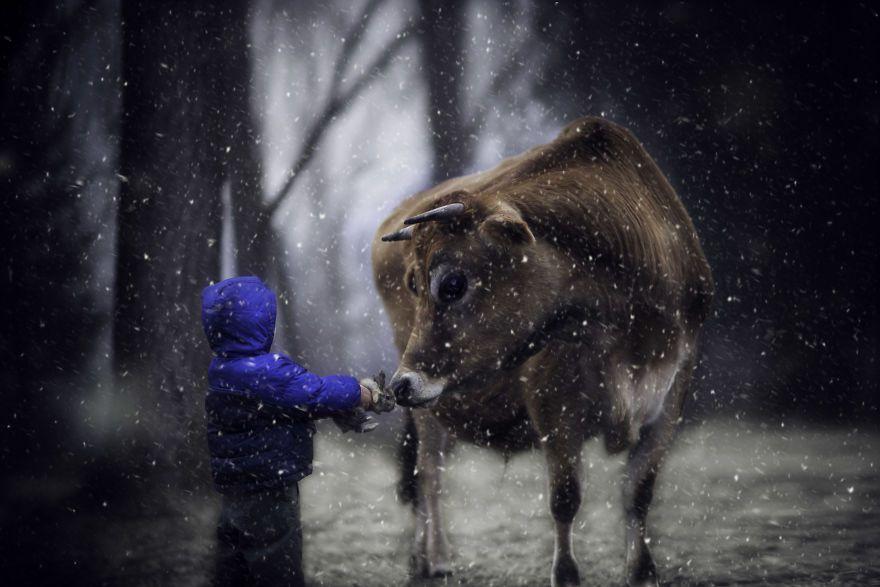 Bộ ảnh tuyệt đẹp về tuổi thơ trên nông trại - 2