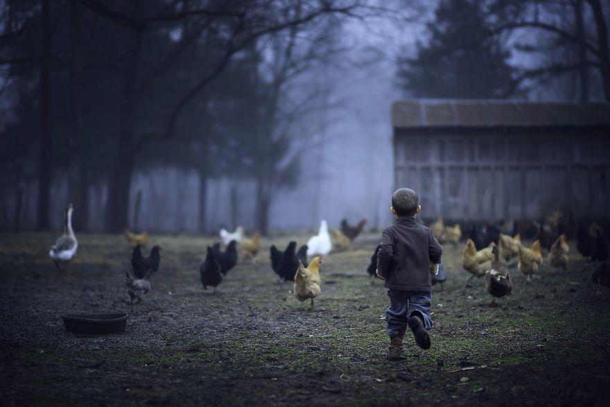 Bộ ảnh tuyệt đẹp về tuổi thơ trên nông trại - 3