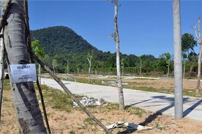 Yêu cầu cấm người Việt đứng tên hộ người Trung Quốc mua đất đai