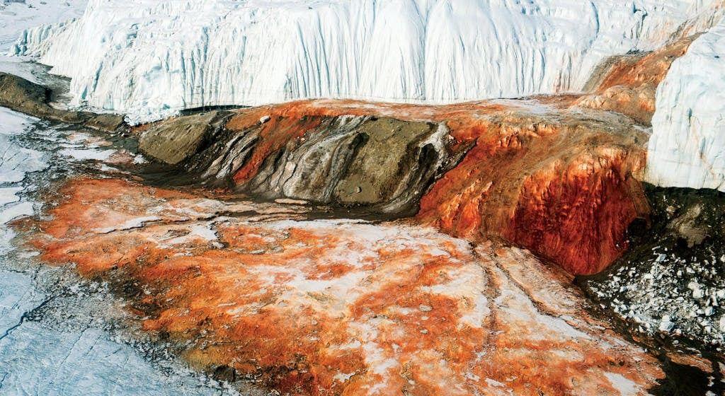 'Thác máu' như trong phim kinh dị ở Nam Cực