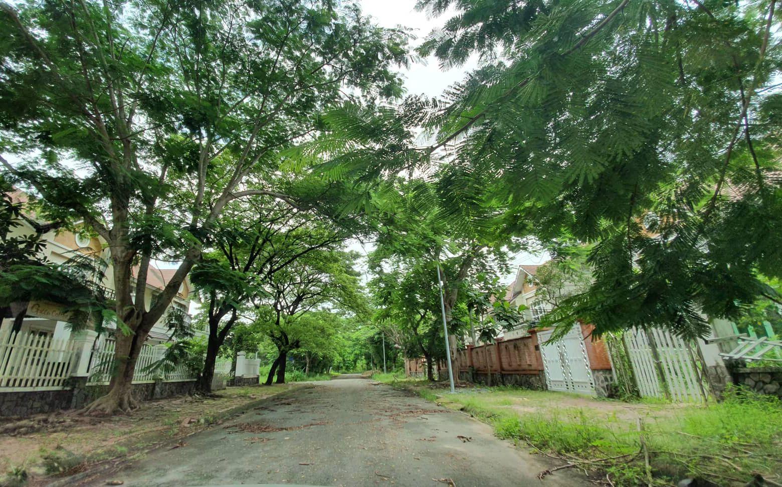 La liệt chung cư, biệt thự bỏ hoang ở Nhơn Trạch - 6