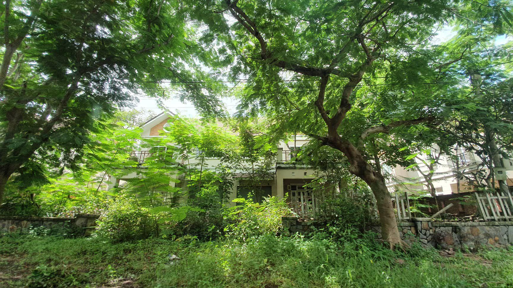 La liệt chung cư, biệt thự bỏ hoang ở Nhơn Trạch - 4