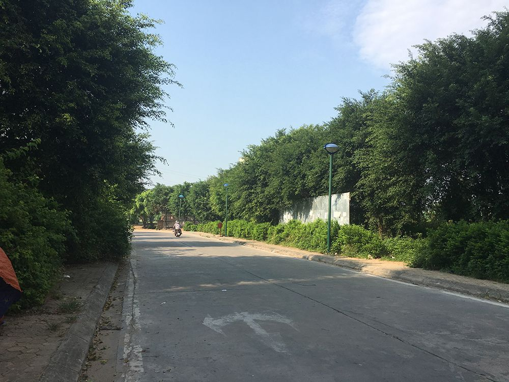 Sự thật rắn độc bủa vây toà chung cư mới ở Hà Nội - 3