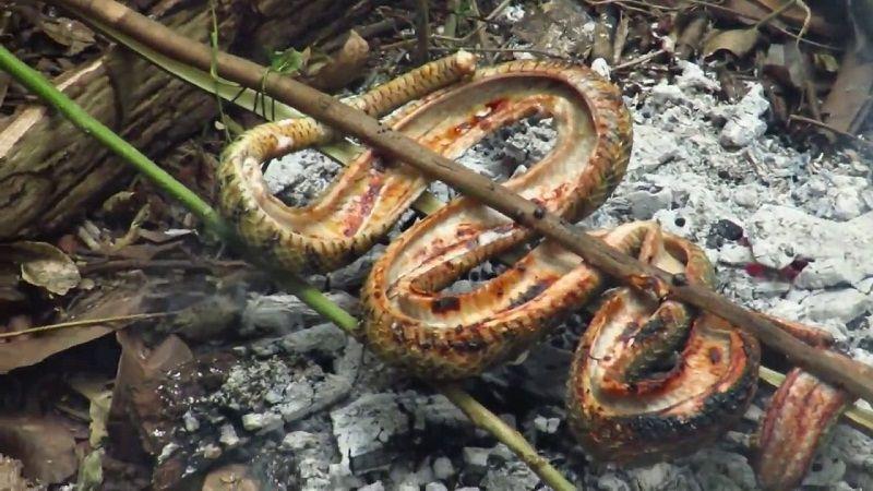 """Hết hồn với 4 món ăn được chế biến từ rắn, vừa ăn vừa """"dựng tóc gáy"""" - 6"""