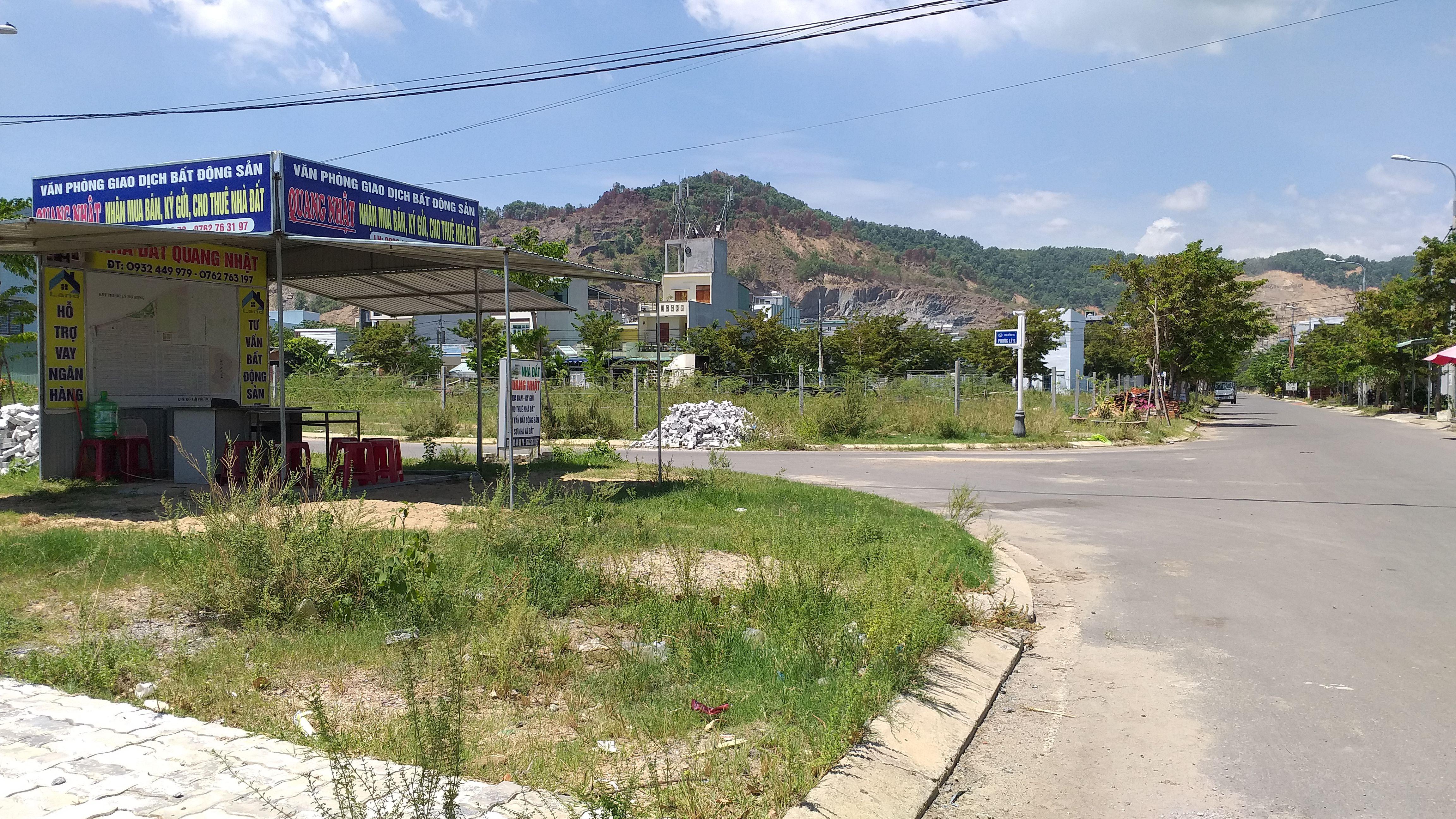 Đà Nẵng thành lập Ban chỉ đạo kiểm kê đất đai năm 2019 - 1