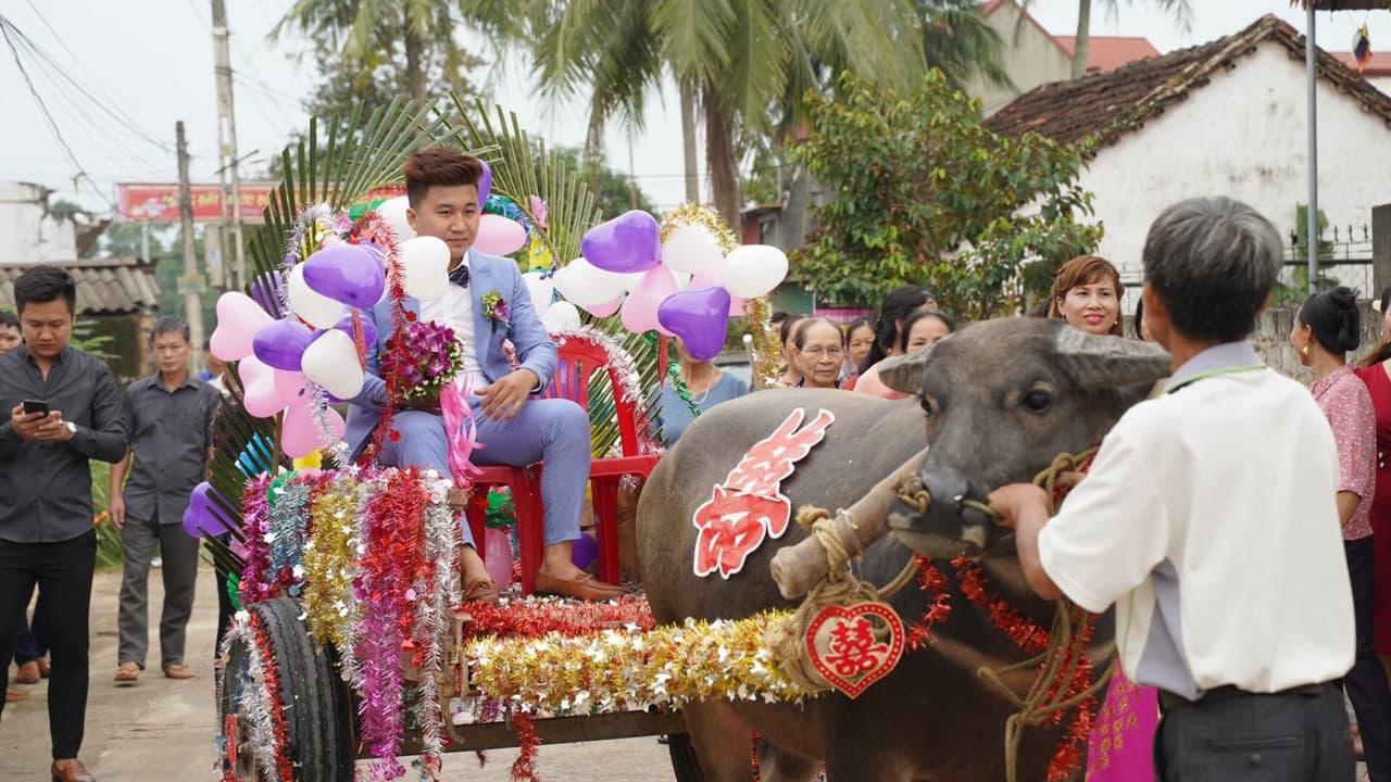 Độc đáo đám cưới rước dâu bằng xe trâu ở Thanh Hóa - 1