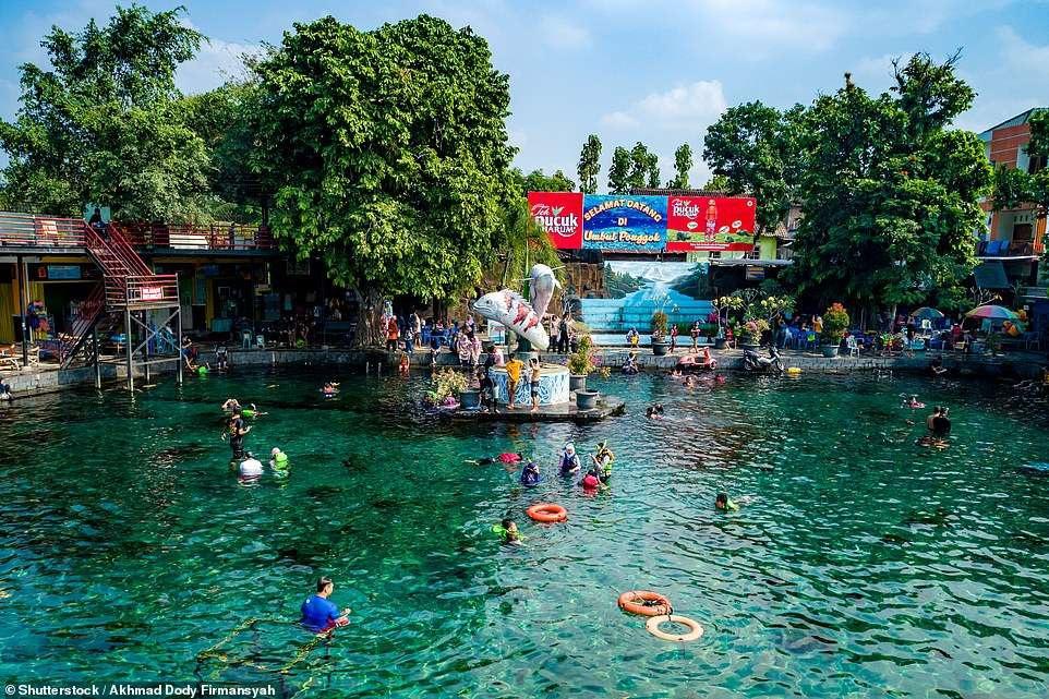Ảnh chụp dưới nước độc đáo khiến khách nườm nượp kéo đến lặn ao làng ở Indonesia - 1